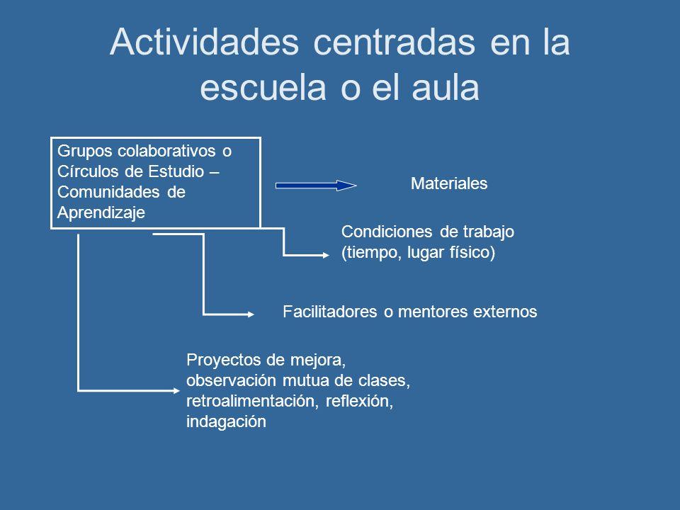 Actividades centradas en la escuela o el aula