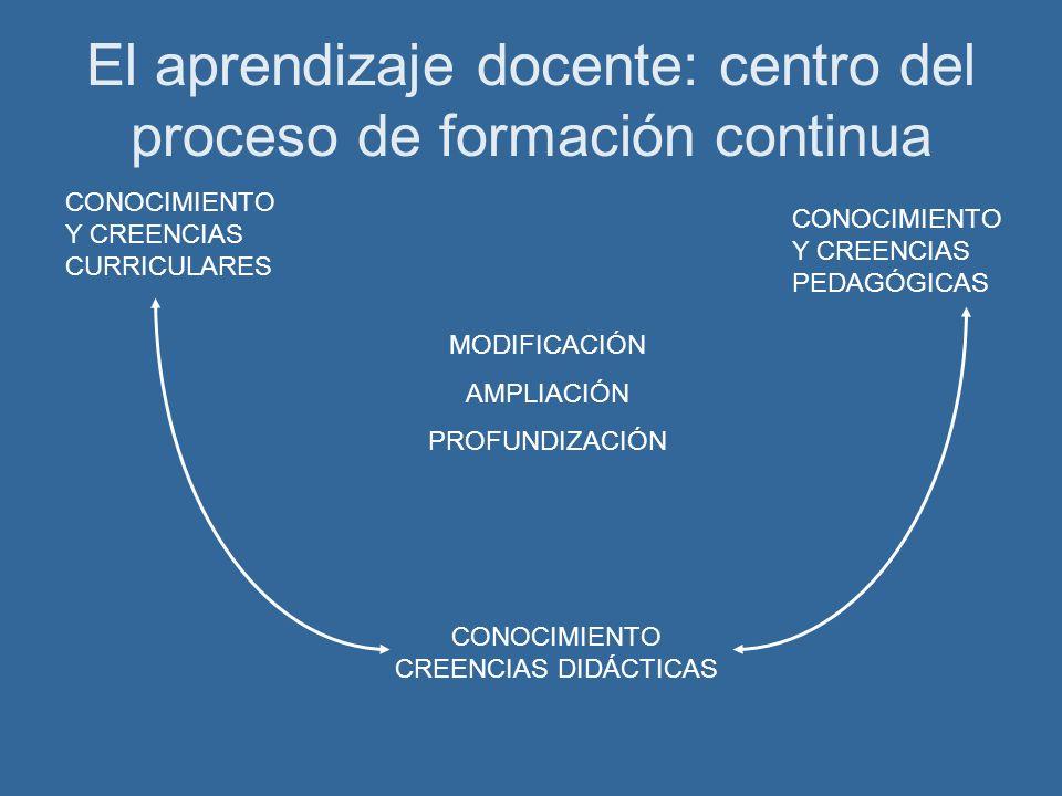 El aprendizaje docente: centro del proceso de formación continua