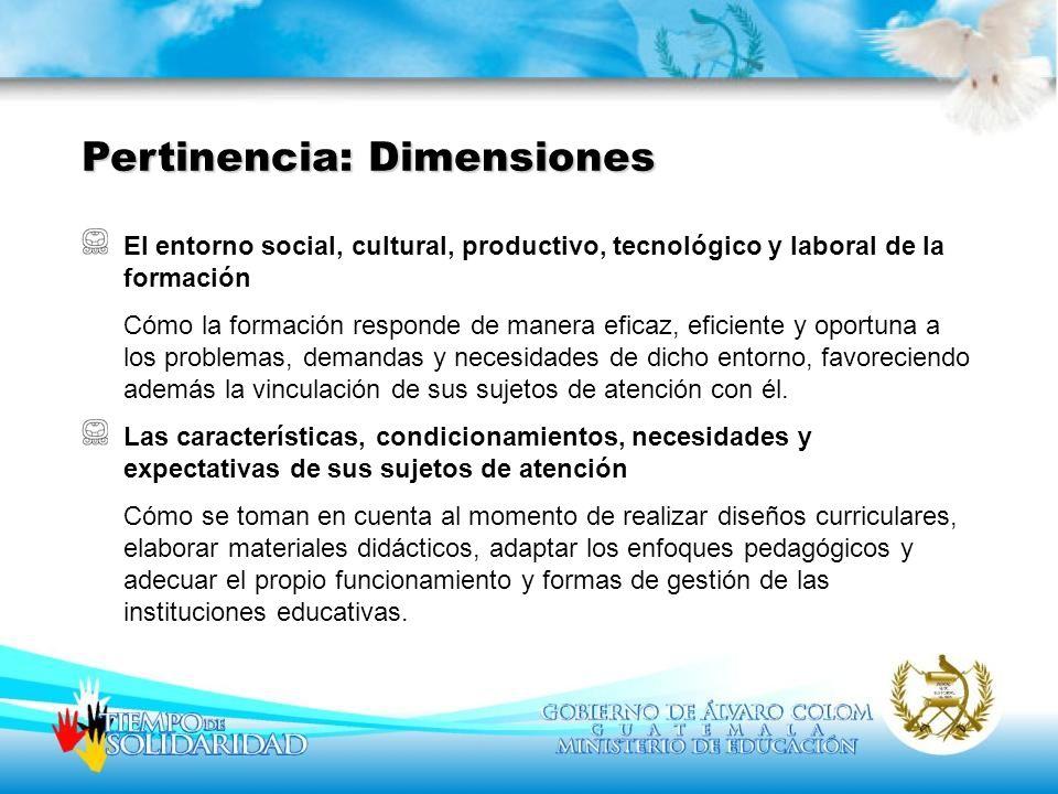 Pertinencia: Dimensiones
