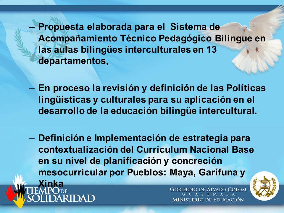 Propuesta elaborada para el Sistema de Acompañamiento Técnico Pedagógico Bilingue en las aulas bilingües interculturales en 13 departamentos,