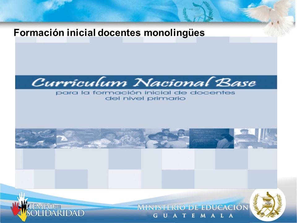 Formación inicial docentes monolingües
