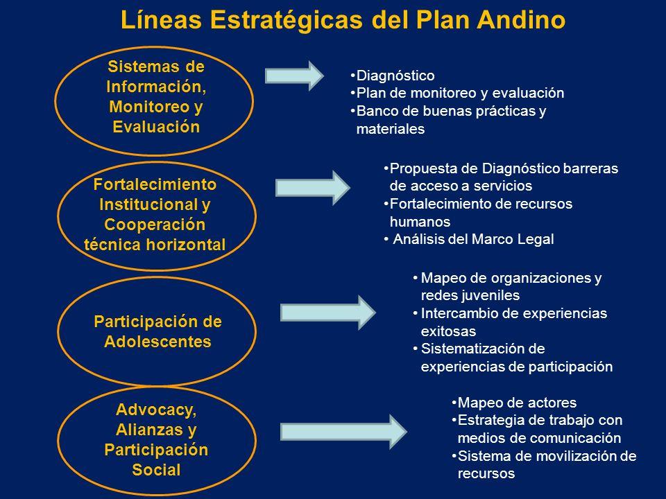 Líneas Estratégicas del Plan Andino