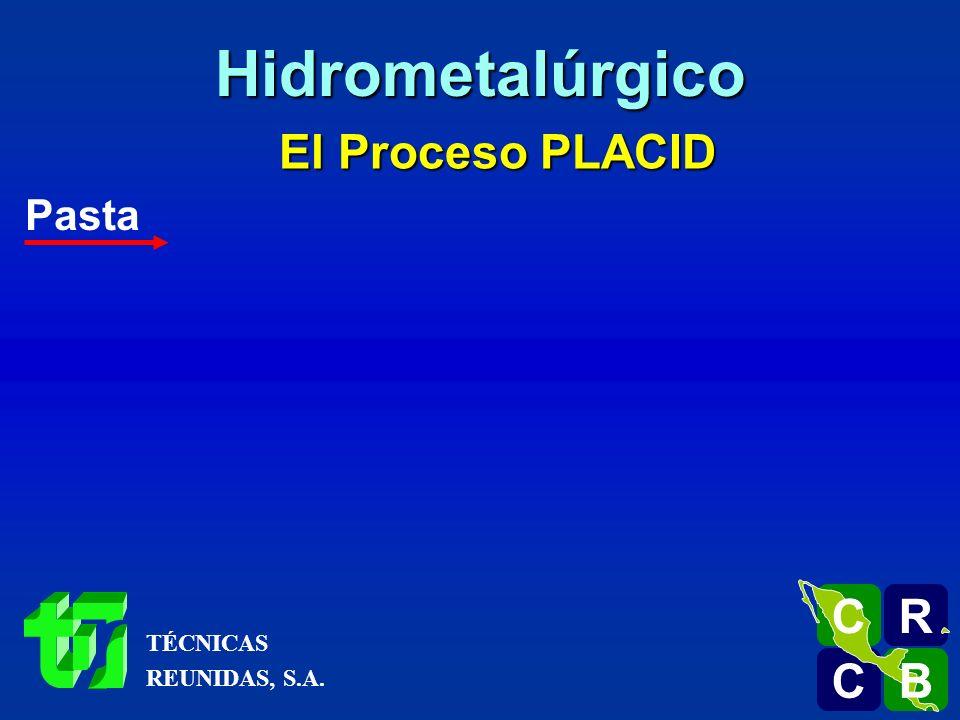 Hidrometalúrgico El Proceso PLACID Pasta R C B TÉCNICAS REUNIDAS, S.A.