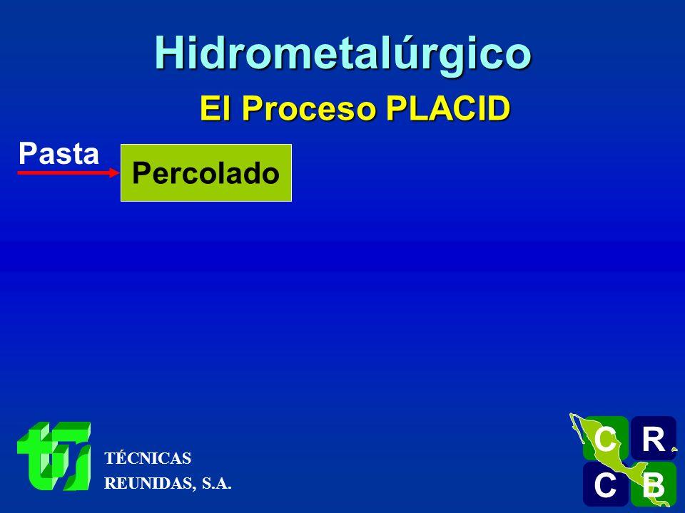 Hidrometalúrgico El Proceso PLACID R C B Pasta Percolado TÉCNICAS