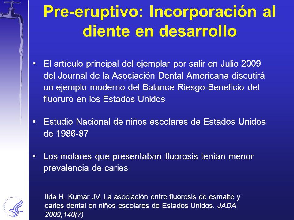 Pre-eruptivo: Incorporación al diente en desarrollo