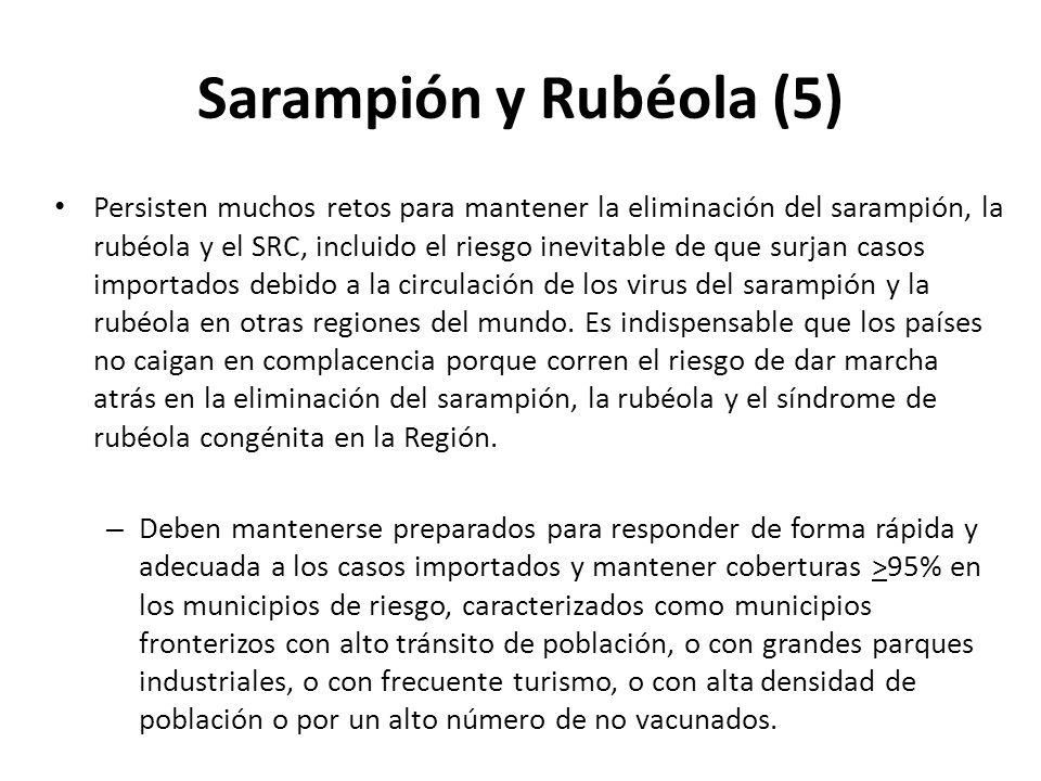 Sarampión y Rubéola (5)