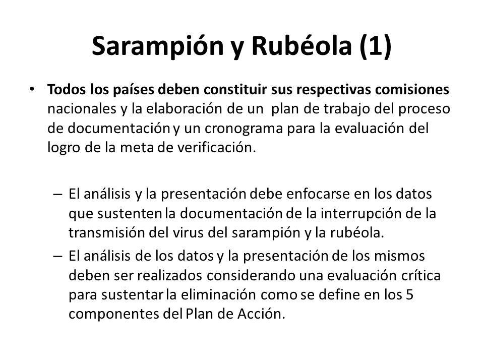 Sarampión y Rubéola (1)