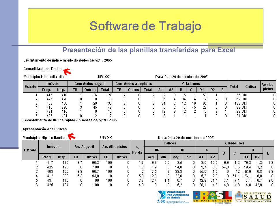 Software de Trabajo Presentación de las planillas transferidas para Excel  