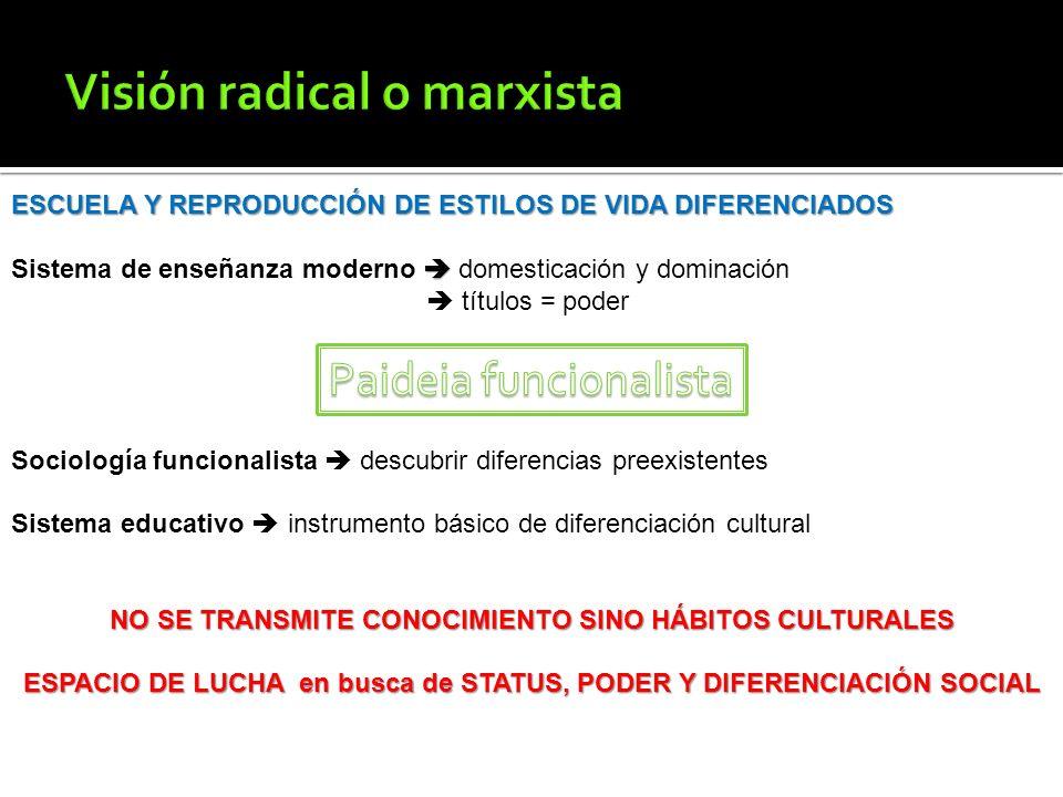 Visión radical o marxista