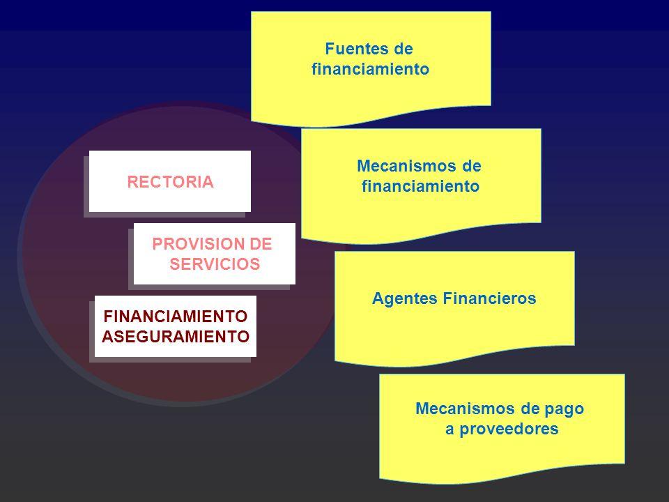 Fuentes de financiamiento. Mecanismos de. financiamiento. RECTORIA. PROVISION DE. SERVICIOS. Agentes Financieros.