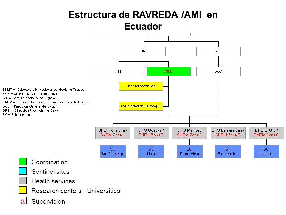 Estructura de RAVREDA /AMI en Ecuador