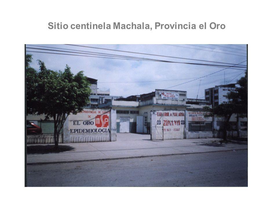 Sitio centinela Machala, Provincia el Oro