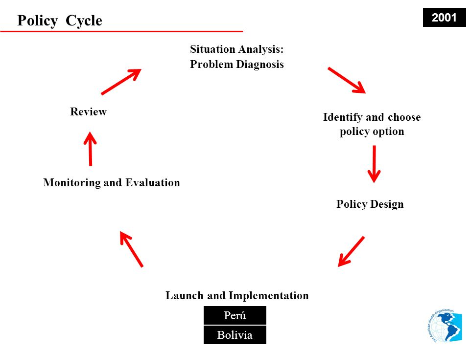 Policy Cycle 2001 Situation Analysis: Problem Diagnosis Review
