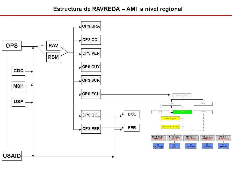 Estructura de RAVREDA – AMI a nivel regional