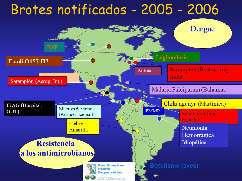 Brotes notificados - 2005 - 2006 Dengue Resistencia
