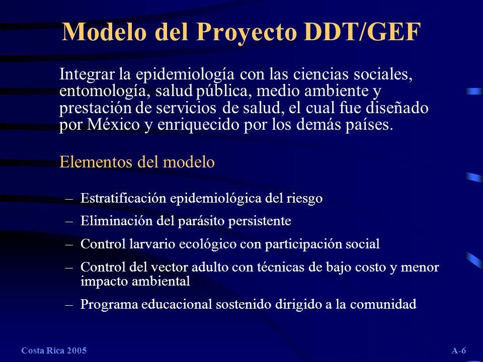Modelo del Proyecto DDT/GEF
