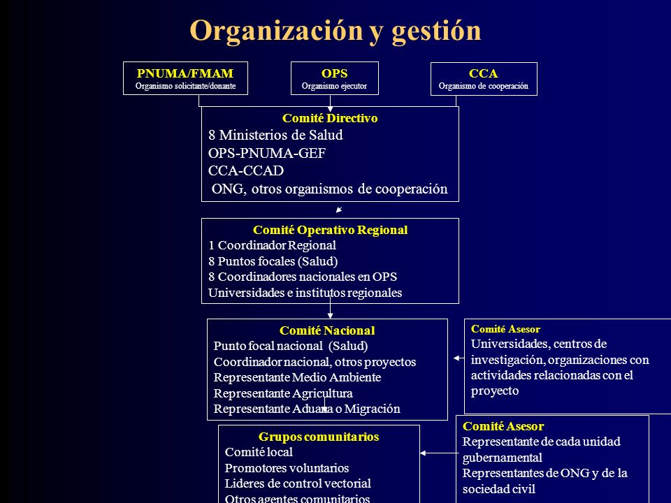 Organización y gestión Comité Operativo Regional