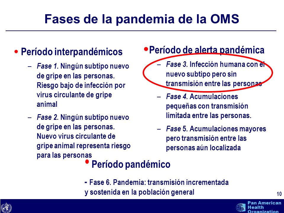 Fases de la pandemia de la OMS
