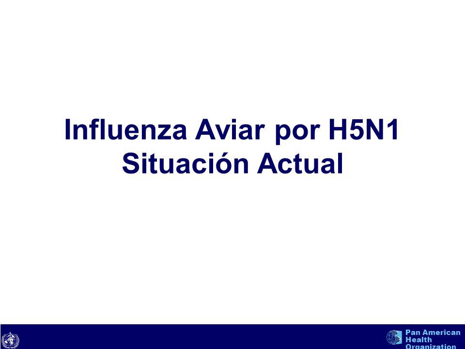 Influenza Aviar por H5N1 Situación Actual