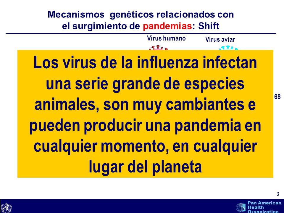 Mecanismos genéticos relacionados con el surgimiento de pandemias: Shift