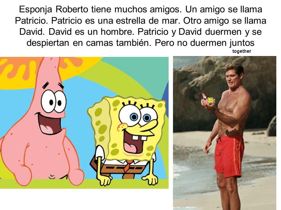 Esponja Roberto tiene muchos amigos. Un amigo se llama Patricio