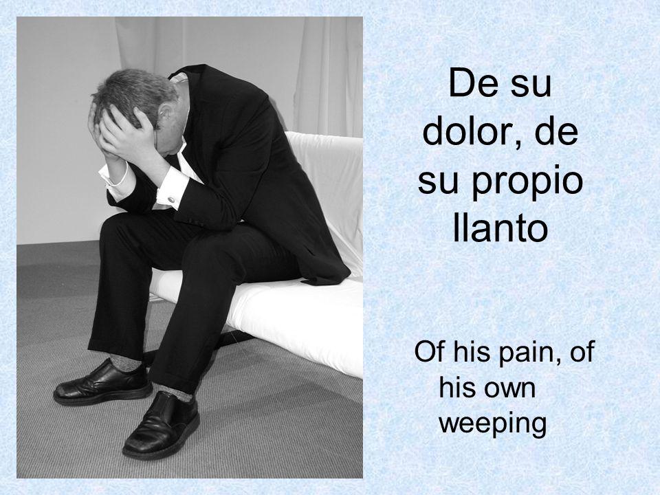 De su dolor, de su propio llanto