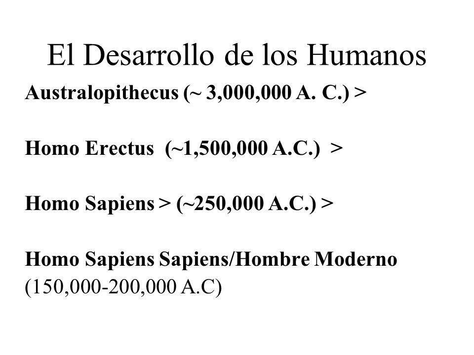 El Desarrollo de los Humanos