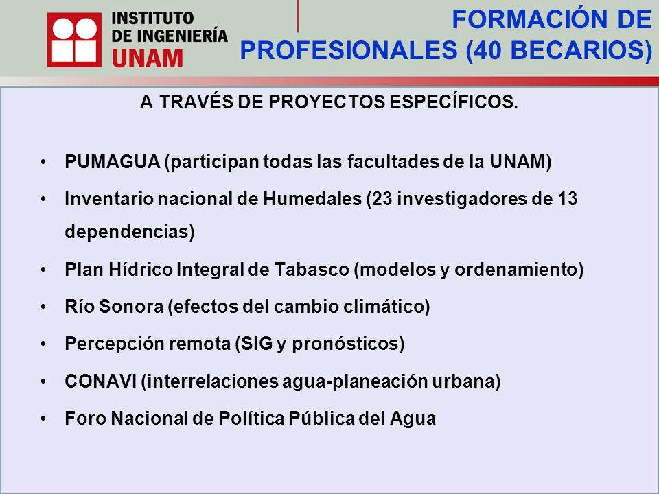 A TRAVÉS DE PROYECTOS ESPECÍFICOS.