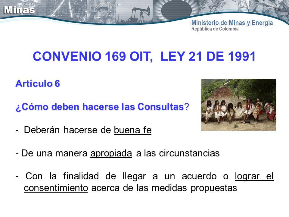 CONVENIO 169 OIT, LEY 21 DE 1991 Artículo 6