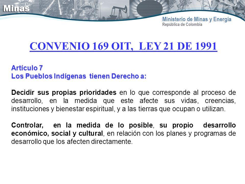 CONVENIO 169 OIT, LEY 21 DE 1991 Artículo 7
