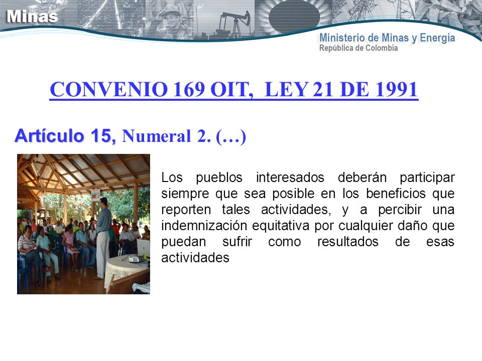 CONVENIO 169 OIT, LEY 21 DE 1991 Artículo 15, Numeral 2. (…)