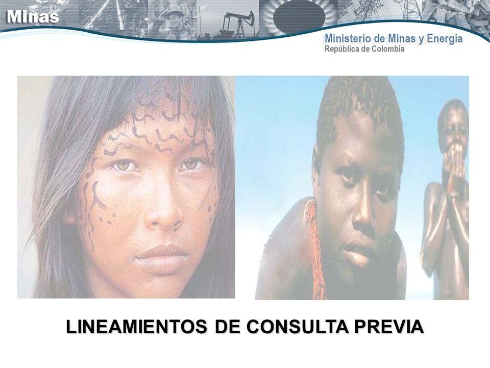 LINEAMIENTOS DE CONSULTA PREVIA