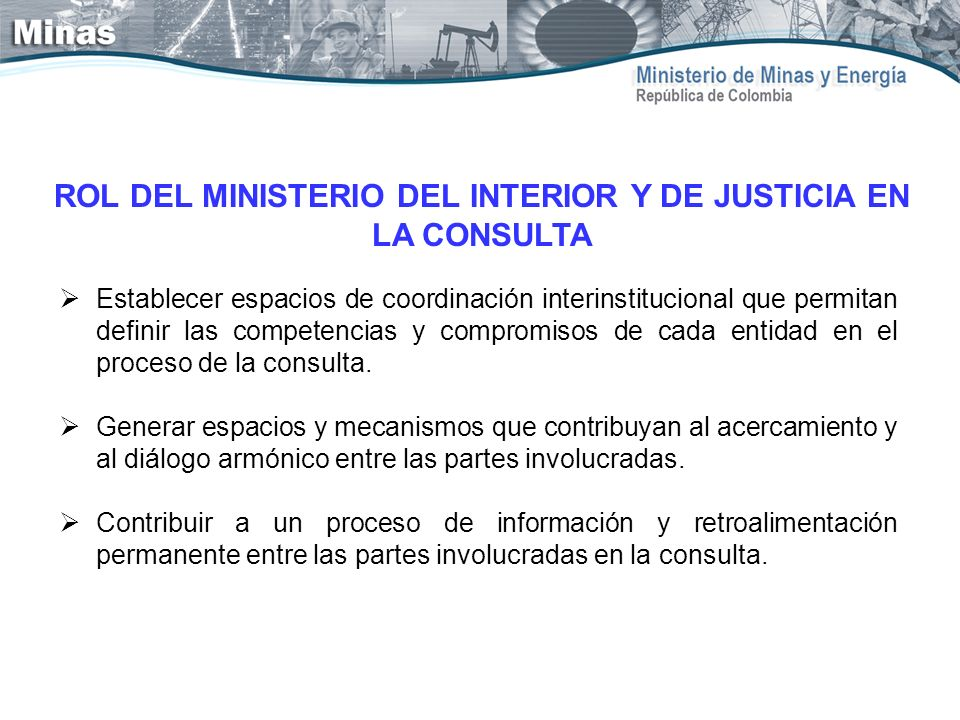 ROL DEL MINISTERIO DEL INTERIOR Y DE JUSTICIA EN LA CONSULTA