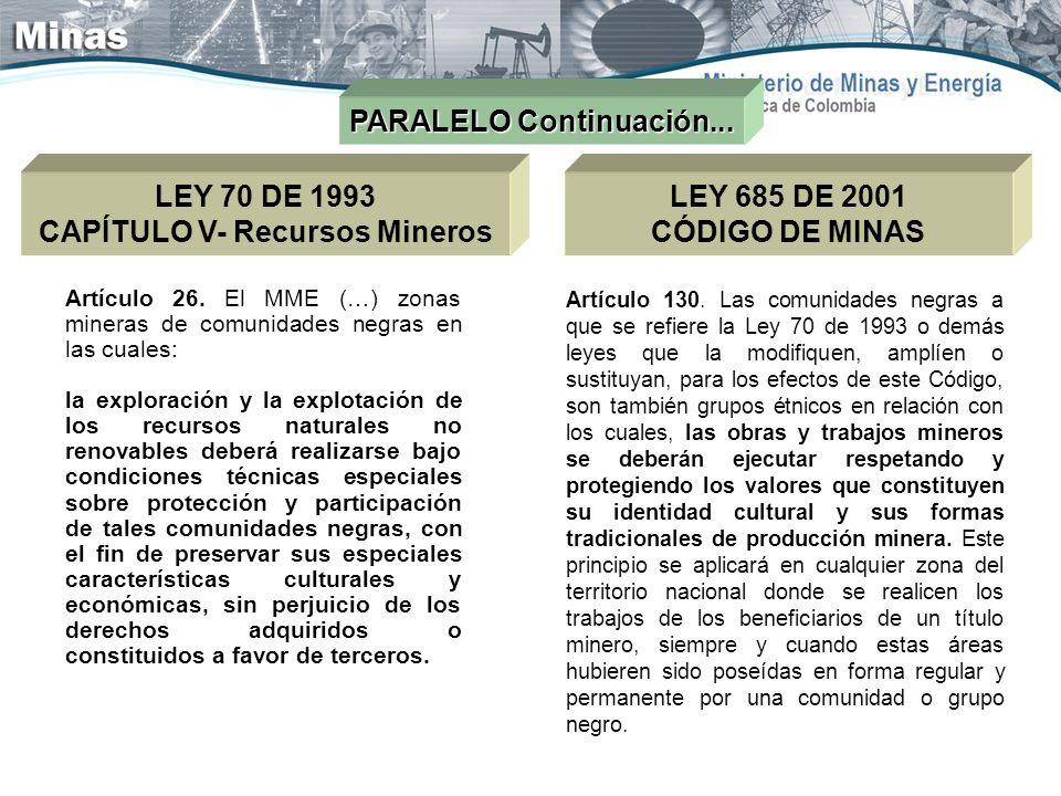CAPÍTULO V- Recursos Mineros