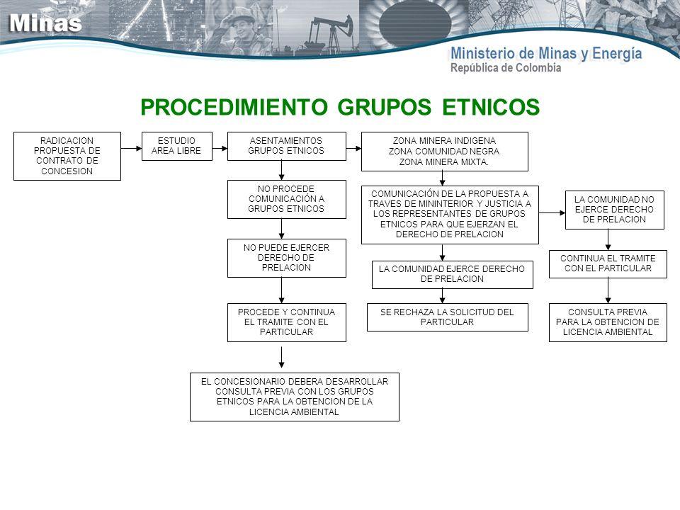 PROCEDIMIENTO GRUPOS ETNICOS