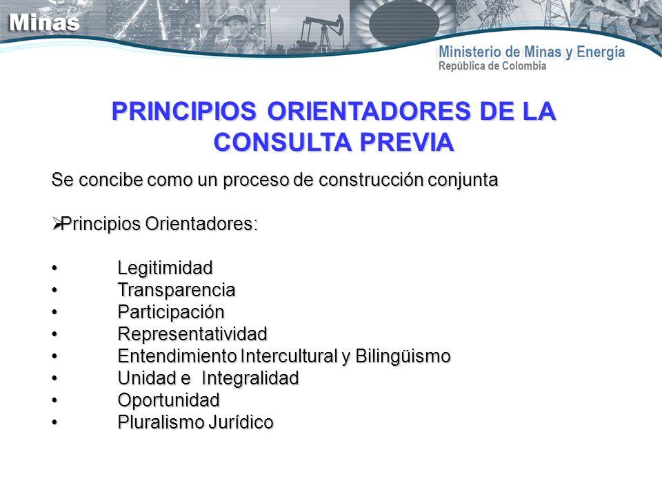PRINCIPIOS ORIENTADORES DE LA CONSULTA PREVIA