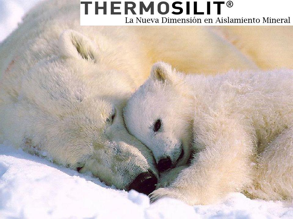 Thermosilit – die neue Dimension im mineralischen Dämmen