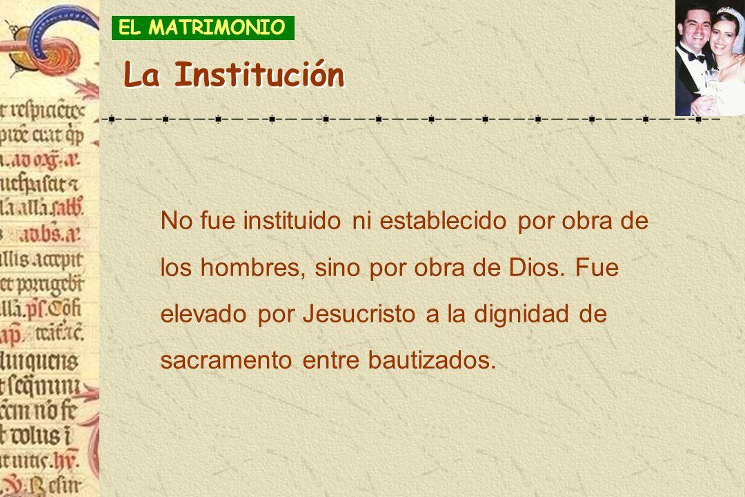EL MATRIMONIOLa Institución.