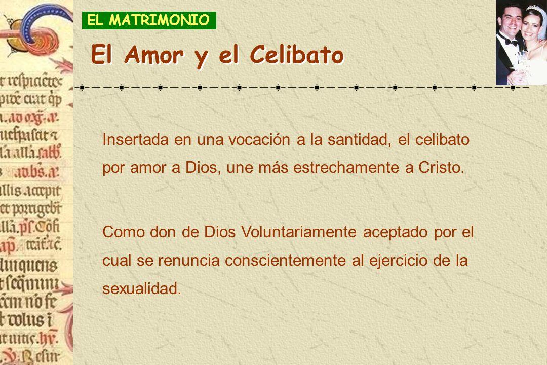 EL MATRIMONIO El Amor y el Celibato. Insertada en una vocación a la santidad, el celibato por amor a Dios, une más estrechamente a Cristo.