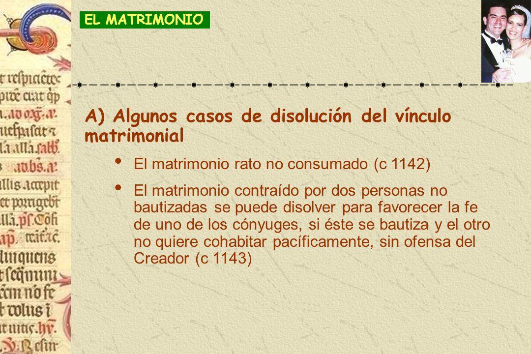A) Algunos casos de disolución del vínculo matrimonial