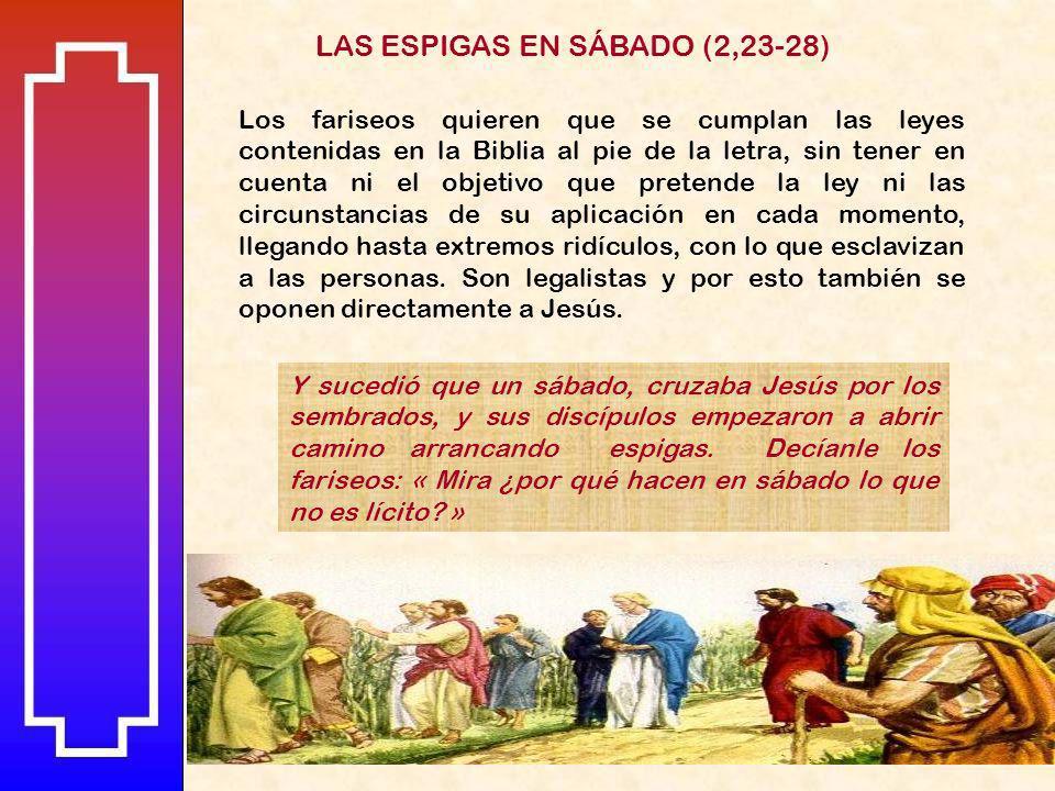 LAS ESPIGAS EN SÁBADO (2,23-28)