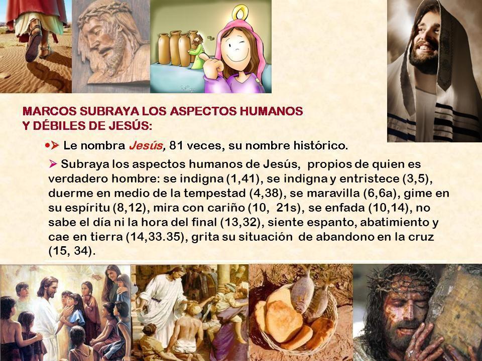  Subraya los aspectos humanos de Jesús, propios de quien es verdadero hombre: se indigna (1,41), se indigna y entristece (3,5), duerme en medio de la tempestad (4,38), se maravilla (6,6a), gime en su espíritu (8,12), mira con cariño (10, 21s), se enfada (10,14), no sabe el día ni la hora del final (13,32), siente espanto, abatimiento y cae en tierra (14,33.35), grita su situación de abandono en la cruz (15, 34).