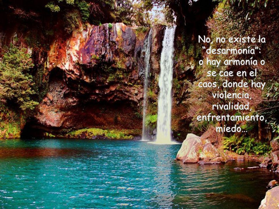 No, no existe la desarmonía : o hay armonía o se cae en el caos, donde hay violencia, rivalidad, enfrentamiento, miedo…
