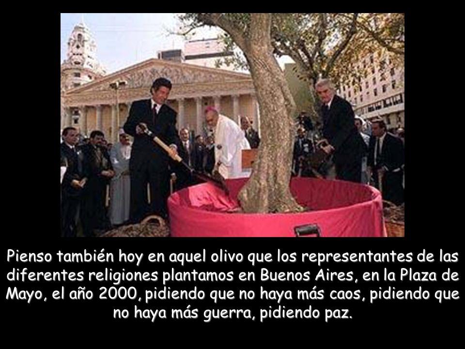 Pienso también hoy en aquel olivo que los representantes de las diferentes religiones plantamos en Buenos Aires, en la Plaza de Mayo, el año 2000, pidiendo que no haya más caos, pidiendo que no haya más guerra, pidiendo paz.