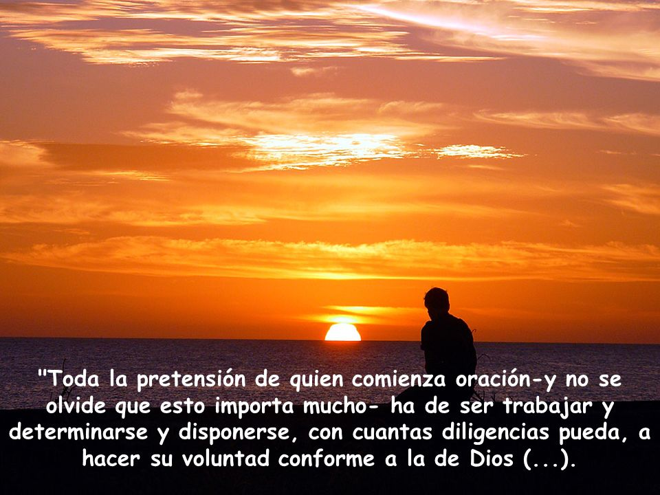Toda la pretensión de quien comienza oración-y no se olvide que esto importa mucho- ha de ser trabajar y determinarse y disponerse, con cuantas diligencias pueda, a hacer su voluntad conforme a la de Dios (...).