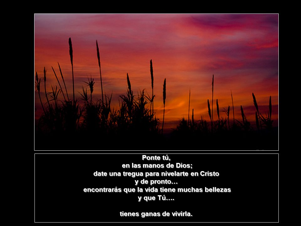 date una tregua para nivelarte en Cristo y de pronto…