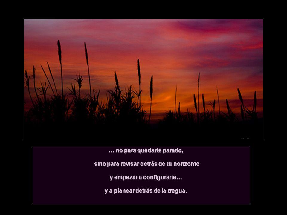 … no para quedarte parado, sino para revisar detrás de tu horizonte