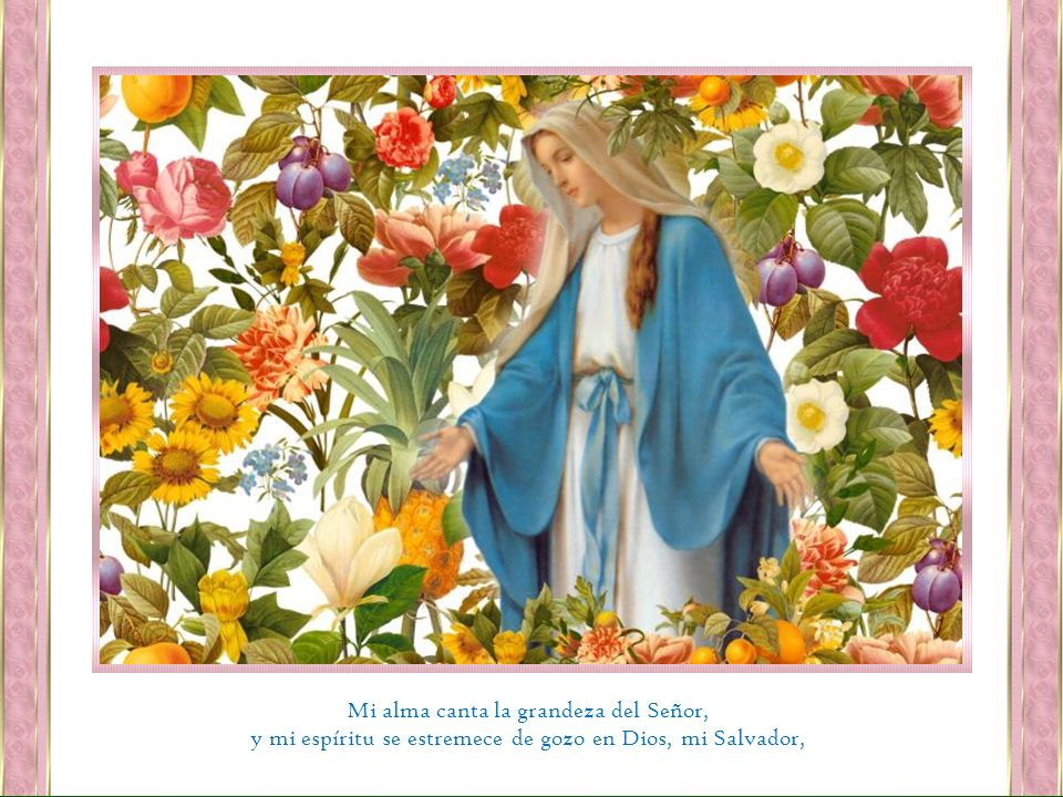 Mi alma canta la grandeza del Señor,
