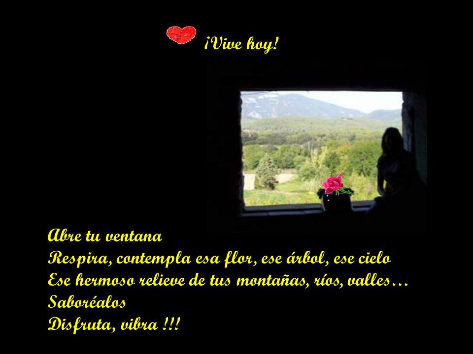 ¡Vive hoy! Abre tu ventana. Respira, contempla esa flor, ese árbol, ese cielo. Ese hermoso relieve de tus montañas, ríos, valles…