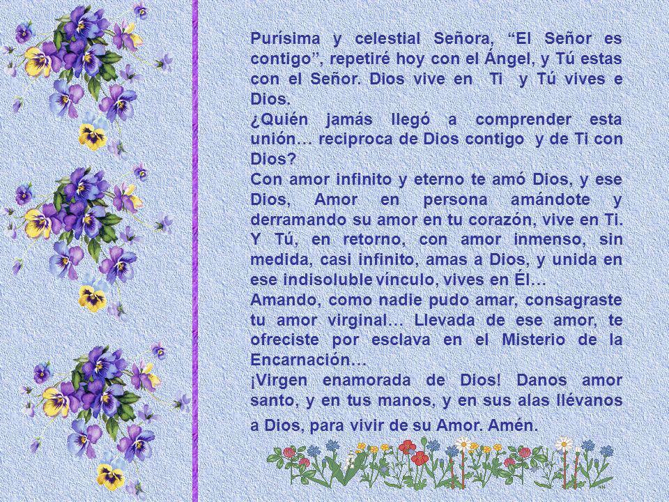 Purísima y celestial Señora, El Señor es contigo , repetiré hoy con el Ángel, y Tú estas con el Señor. Dios vive en Ti y Tú vives e Dios.